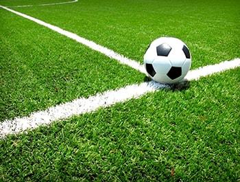 grama para campo de futebol
